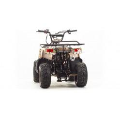 Квадроцикл Motoland ATV 110 Rider
