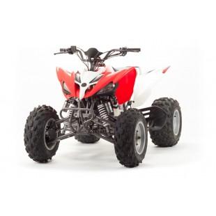 Квадроцикл Motoland 125s