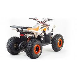 Квадроцикл Motoland 125 COYOTE
