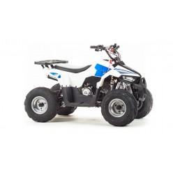 Квадроцикл Motoland ATV 110 EAGLE