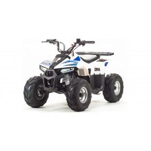 квадроцикл motoland