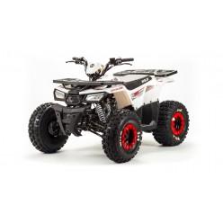 ATV Motoland WILD 125