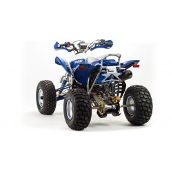 Квадроцикл Motoland ATV 250 Dakar